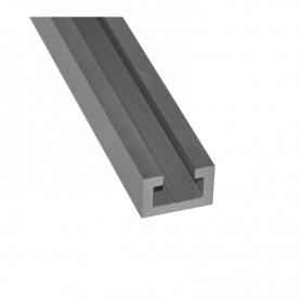 PROFILE T-TRACK 19125 2000 mm